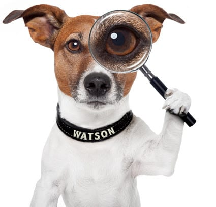 Watson Watchdog